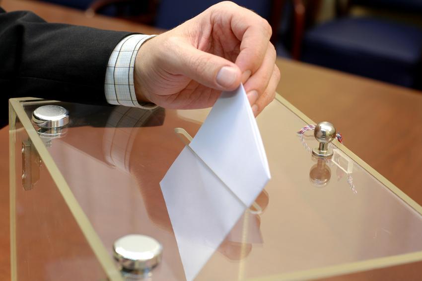 Выборы в Гагре