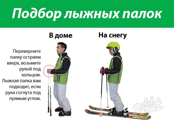 Как выберают палки для горных лыж
