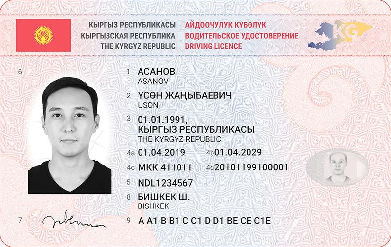 Фото ГРС. Образец новых водительских удостоверений