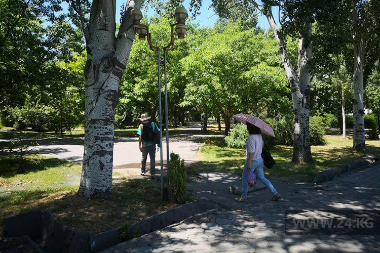 Фото ИА «24.kg». Бишкекчане крайне редко пользуются зонтиками, чтобы защититься от солнца