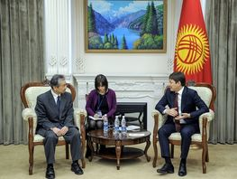 Kyrgyzstan invites Japan to jointly develop e-health care