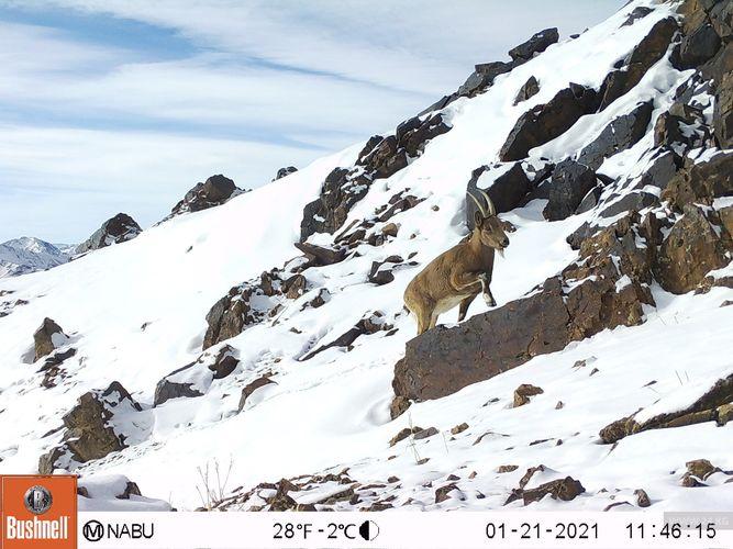 Фото NABU-Кыргызстан