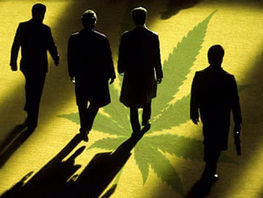 Scandal with Liglass Trading. US secondary market and marijuana pushers