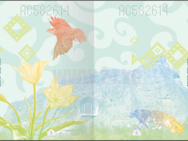 Фото ГРС КР. Проект нового биометрического общегражданского паспорта КР