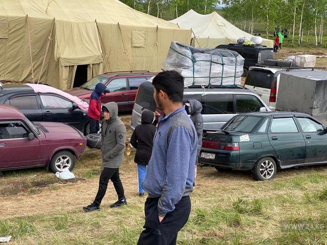 мигрантов из КР