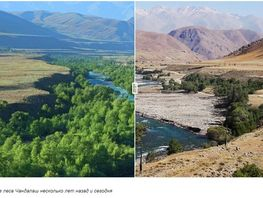 Photo of the day. How landscape of Chatkal changes over ten years