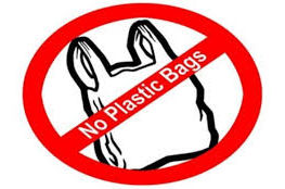 Fines for use of plastic bags may be introduced in Issyk-Kul region